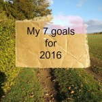 My 7 goals for 2016