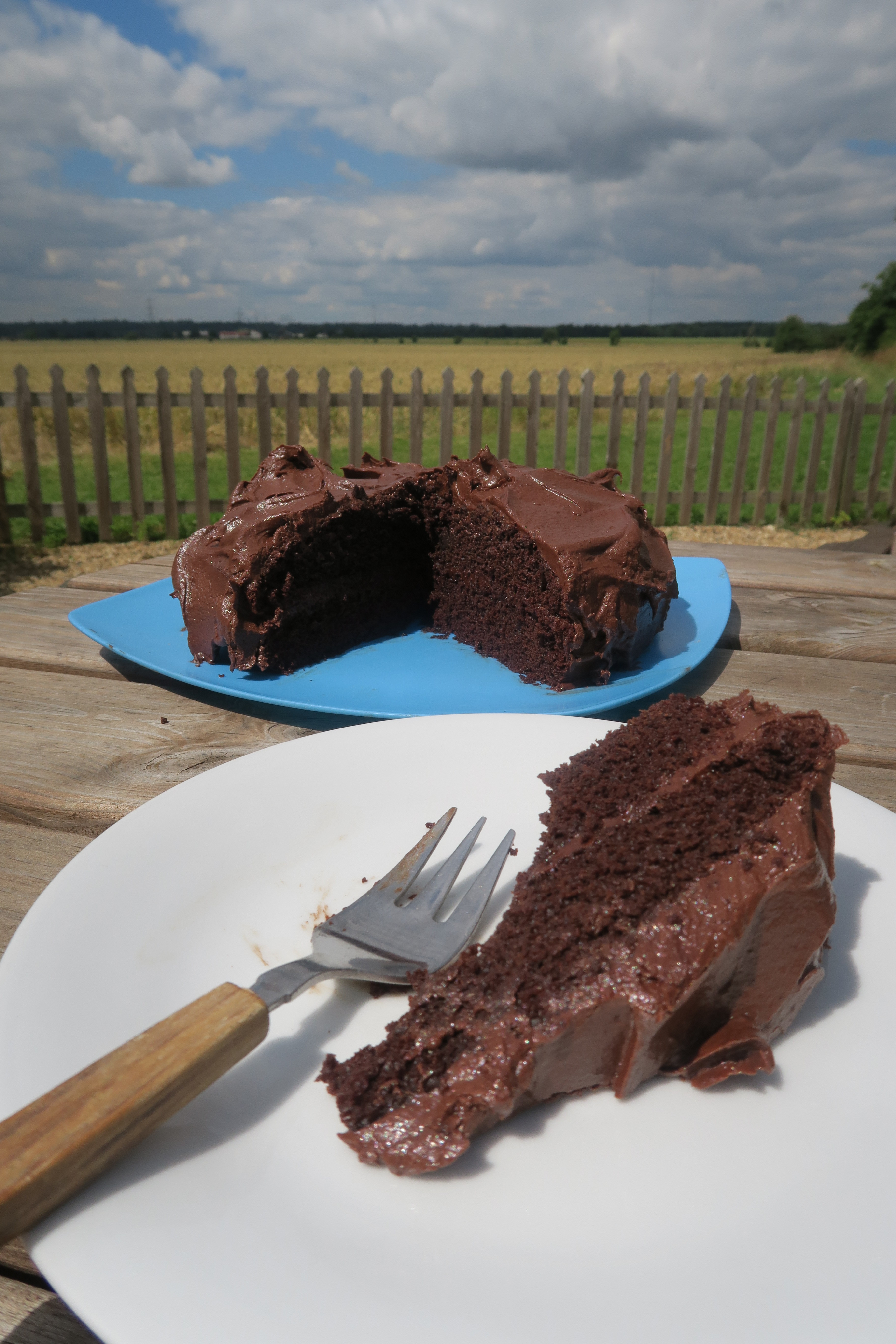 The only vegan chocolate cake recipe youll ever need Free From