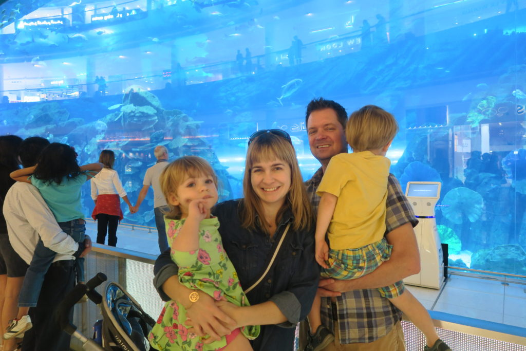 the dubai aquarium tank is free family attraction in dubai