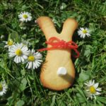 How to make easy Easter bunny biscuits with a gingerbread man cutter