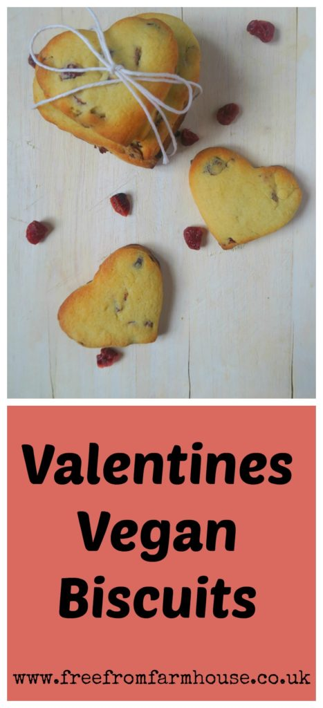 These Valentines vegan biscuits are easy to make and add a kick of colour with the cranberries and a hint of warmth from the cinnamon.