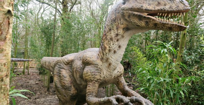 Review:  World Of Dinosaurs At Paradise Wildlife Park